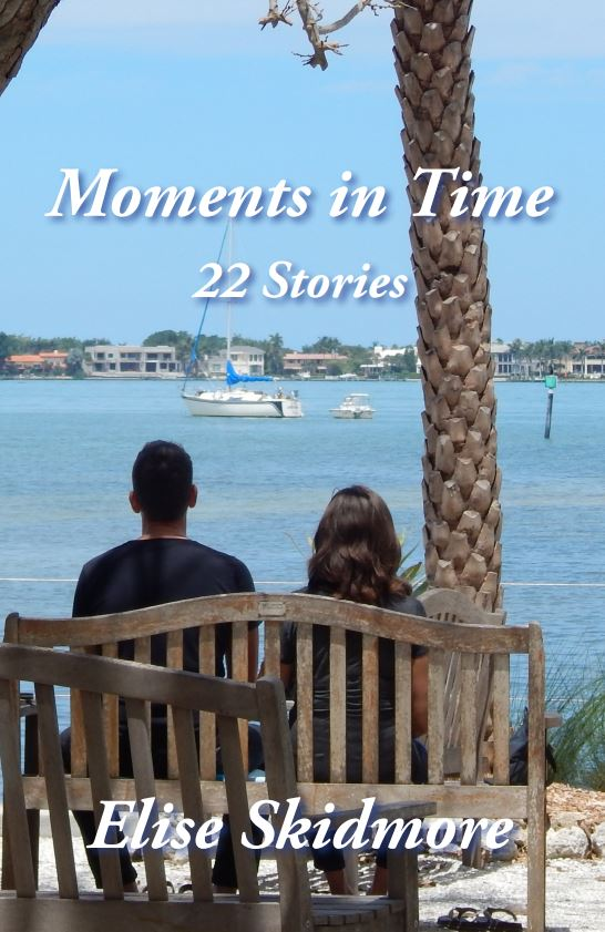 Moments in Time Cover, couple sitting at the beach
