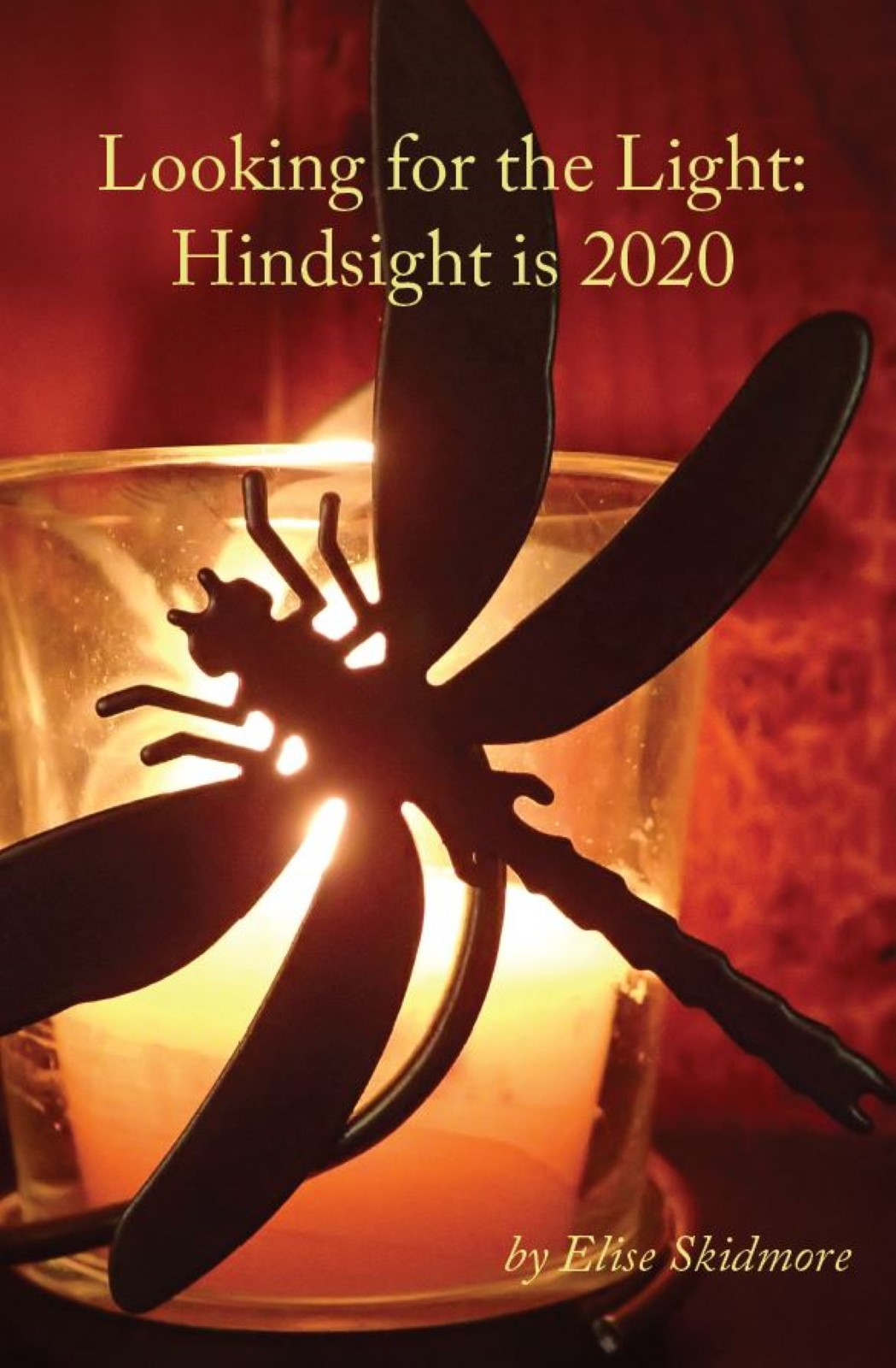 Looking for the Light: Hindsight is 2020 by Elise Skidmore - shows dragonfly over candle